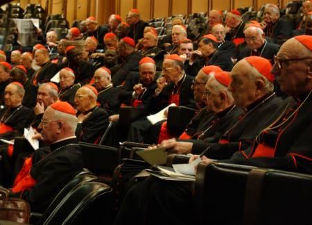 Los cardenales reunidos en las llamadas Congregaciones Generales