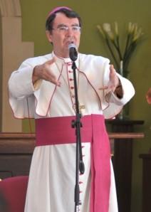 El nuncio Christophe Pierre cuestionó a los obispos en la asamblea de noviembre de 2013