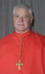Cardenal Gerhard Ludwig Müller encabeza rebelión
